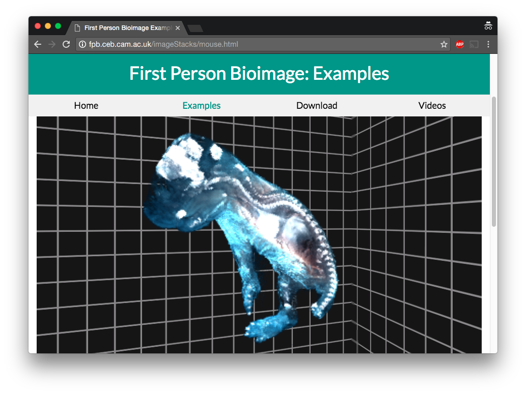 Screenshot of FPBioimage running on an example website.
